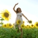 Happy Little Girl on the Field of Lifestyle Sunflowers Sunlight in Summer - VideoHive Item for Sale