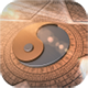 Tai Chi Logo Show - VideoHive Item for Sale
