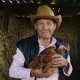 An Elderly Farmer in a Straw Hat Is Holding a Live Chicken. Portrait of a Man with a Chicken on a - VideoHive Item for Sale