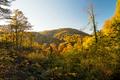 Colourful autumn landscape view - PhotoDune Item for Sale