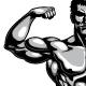 Male Bodybuilder Full Body - GraphicRiver Item for Sale