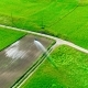 Industrial Farming. Aerial Video Footage: Irrigation of a Lettuce Field in Europe in Summer - VideoHive Item for Sale