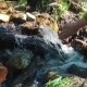 Drink Pure Water From Mountain River Man's Hand Is Absorbed By Pure Water From Mountain River. - VideoHive Item for Sale