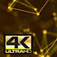 Abstract Gold Digital Internet Social Network Background 4K - VideoHive Item for Sale