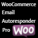 WooCommerce email autoresponder pro - CodeCanyon Item for Sale