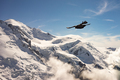 Alpine chough flying above snowy mountain - PhotoDune Item for Sale