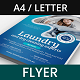 Laundry and Dry Cleaning Services - GraphicRiver Item for Sale