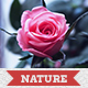 25 Nature Actions - GraphicRiver Item for Sale