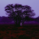 Emptihood - AudioJungle Item for Sale