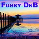 Funk Boy - AudioJungle Item for Sale