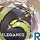 Logo Intro Elegance - VideoHive Item for Sale