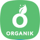 Organik - Organic Food Store WordPress Theme - ThemeForest Item for Sale