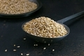Sesame seeds in a metal scoop  - PhotoDune Item for Sale