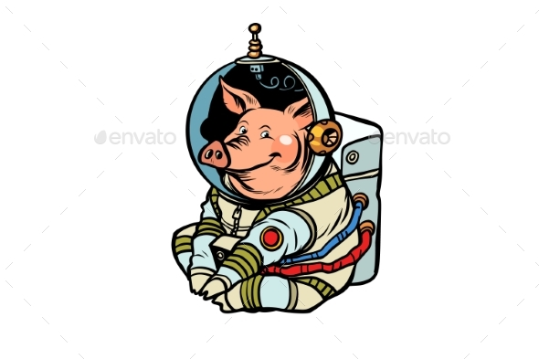 Pig Astronaut Character.