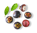 mangosteen sweet fruit isolated on white background. top view - PhotoDune Item for Sale