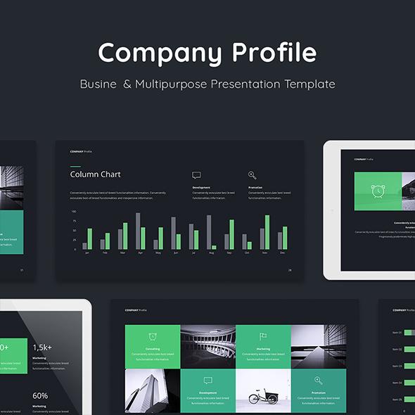 Company Profile Presentation Template (PPT)
