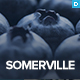 Somerville - Minimalist & Typography-First Theme for Writers - ThemeForest Item for Sale
