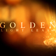 Golden Light Leaks - VideoHive Item for Sale