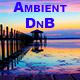Vocal Drum & Bass - AudioJungle Item for Sale