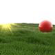 grassfield scene for cinema 4d - 3DOcean Item for Sale