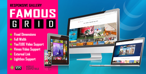 Famous - Responsive Image And Video Grid Gallery Download