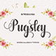 Pugsley - GraphicRiver Item for Sale