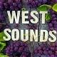 Unobtrusive Music to Video - AudioJungle Item for Sale