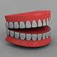 3D Teeth (Animated & Editable) - 3DOcean Item for Sale
