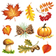 Autumn Items - GraphicRiver Item for Sale