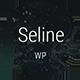 Seline - Creative Photography & Portfolio WordPress Theme - ThemeForest Item for Sale