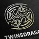 Twins Dragon Logo - GraphicRiver Item for Sale
