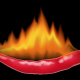 Chili Pepper - GraphicRiver Item for Sale