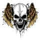 a Human Skull with Wings Vector Illustration - GraphicRiver Item for Sale