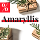Amaryllis  – Responsive HTML Email + StampReady, MailChimp & CampaignMonitor compatible files - ThemeForest Item for Sale