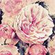 Sensation - Watercolor Photoshop Action - GraphicRiver Item for Sale
