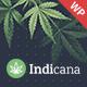 Indicana - Medical Marijuana Dispensary WordPress Theme - ThemeForest Item for Sale