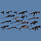 WEAPONS PACK model and textures - 3DOcean Item for Sale