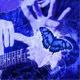 Uplifting Acoustic Indie Folk