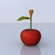Cherry 3D Model - 3DOcean Item for Sale