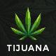 Tijuana - Marijuana Dispensary & Medical WordPress Theme - ThemeForest Item for Sale