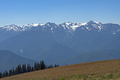 Very Sunny Day in the Olympics - PhotoDune Item for Sale