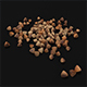 Seeds - 3DOcean Item for Sale