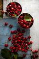 Fresh cherries - PhotoDune Item for Sale