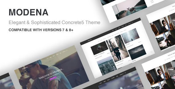 Modena Multi-purpose Concrete5 Theme