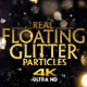 Real Floating Glitter Particles 4K - VideoHive Item for Sale