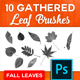 10 High-Res Leaf Brushes - GraphicRiver Item for Sale