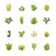 Cactuses Cacti -  Color & Black Vector Icons - GraphicRiver Item for Sale