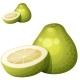 Pomelo Fruit - GraphicRiver Item for Sale