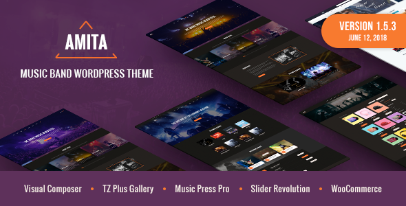 AMITA - Music Band WordPress Theme