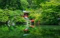 daigo-ji temple in spring - PhotoDune Item for Sale